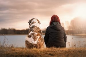 A dog and a woman sitting alone.