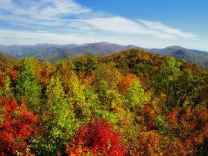 Autumn in Georgia.
