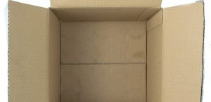 An open cardboard box you can use for packing clothes and shoes.