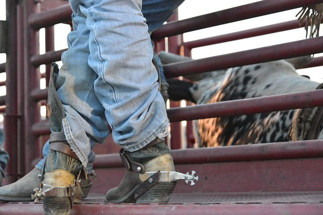 A cowboy on a ranch.