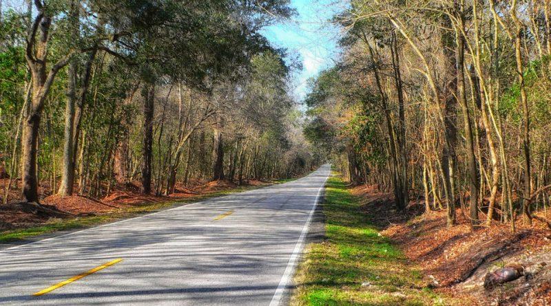 A road leading to South Carolina.