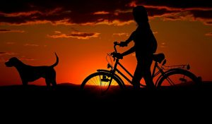 A girl with a bike and her dog enjoying the sunset.