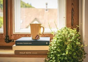 Book,cup and the plant on the window