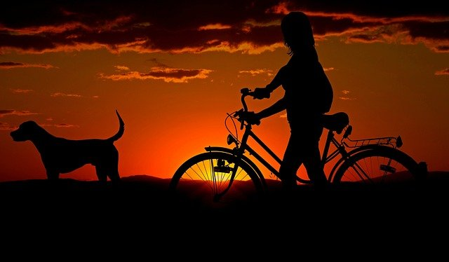 Person beside the bike and a dog