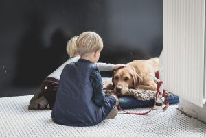 An image of two boys petting a brown dog